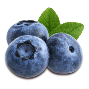 blueberry 2 300x300 - Blueberries